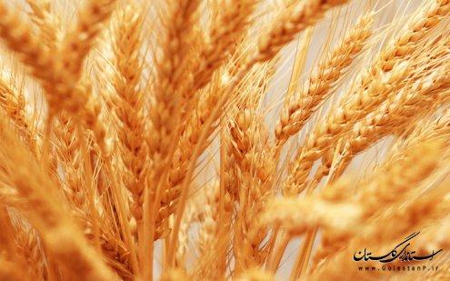 ظرفیت کشاورزی استان گلستان