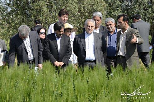 هدف ایجاد مراکز تحقیقات کشاورزی ، ارتقاء کمی و کیفی زراعت است