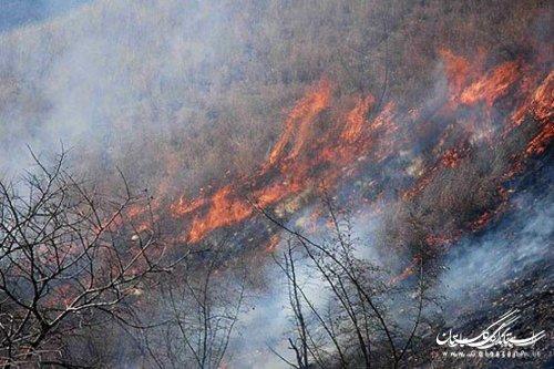 شعلههای آتش پارک ملی گلستان با مدیریت جهادگران خاموش شد
