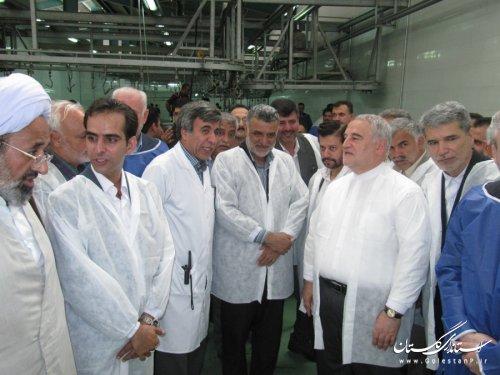 افتتاح کشتارگاه صنعتی دام استان گلستان با حضور استاندار و وزیر جهادکشاورزی