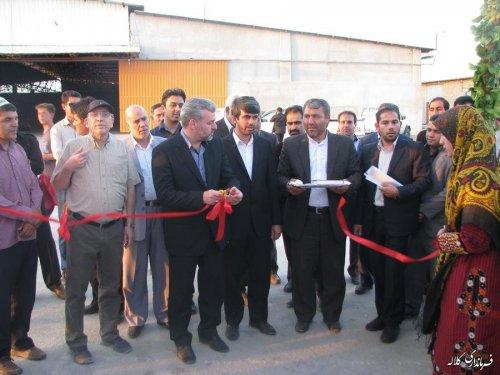مراسم افتتاح و کلنگ زنی 50 طرح در شهرستان کلاله با حضور معاون عمرانی استاندار