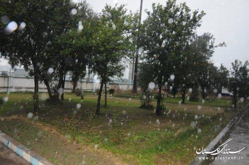 گلستان در دی ماه امسال بیش از 59 درصد کاهش بارندگی داشت