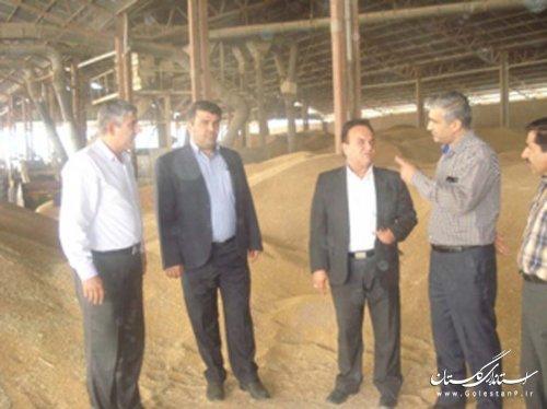 بازدید فرماندار رامیان از مراکز خرید گندم شهرستان