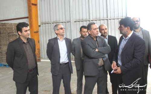 بازدید معاون هماهنگی امور اقتصادی و توسعه منابع  استانداری از کشتارگاه صنعتی زربال