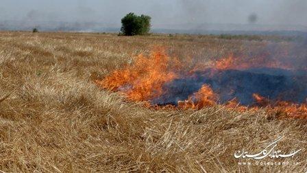 خرد کردن بقایای محصول ، به جای آتش زدن