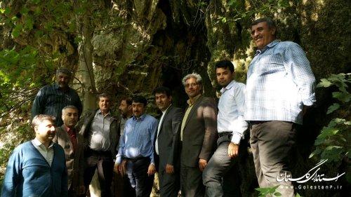بازدید مدیرکل میراث فرهنگی، صنایع دستی و گردشگری از آبشار روستای فارسیان