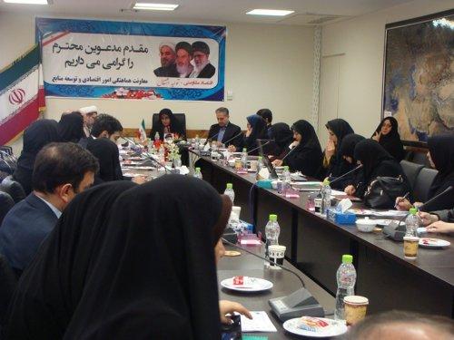 بررسی مسائل حوزه کودک و سلامت بانوان گلستان در کارگروه تخصصی بانوان و خانواده استان