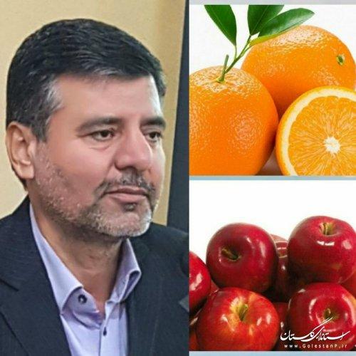 قیمت میوه طرح تنظیم بازار و زمان توزیع