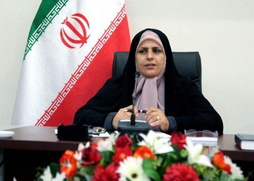 پیام تبریک مدیرکل امور بانوان و خانواده استانداری گلستان به مناسبت هفته دولت