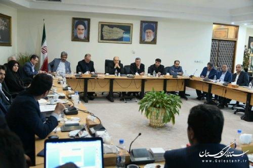 برای ثبت جهانی فرش ترکمن اتاق فکر در استان تشکیل می شود