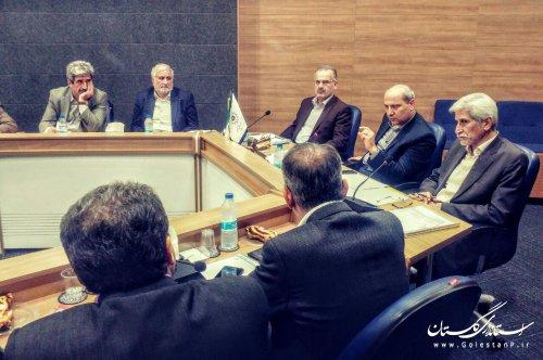 استاندار گلستان: اولویت مصرف کالاهای تولیدی استان، مصارف داخلی است