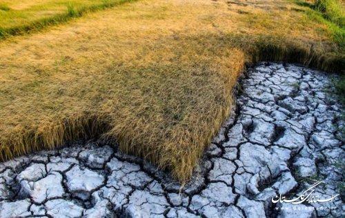 گلستان در سال های گذشته خشکسالی های متعددی را پشت سر گذاشته است