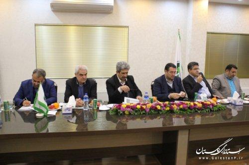 وزارت صنعت ، معدن و تجارت برای استقرار صنایع بزرگ در گلستان کمک کند