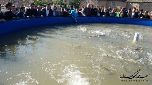 افتتاح و کلنگ زنی پروژه های اداره کل شیلات گلستان در دهه مبارک فجر