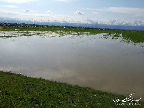 افزایش 86 درصدی بارش های امسال نسبت به سال گذشته و وقوع سیل  در حوضه گرگانرود و قره سو همچنان  محتمل است