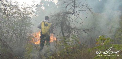 اقدامات و تدابیر مطرح شده از سوی فرمانده یگان حفاظت منابع طبیعی استان در باب کاهش وقوع حریق