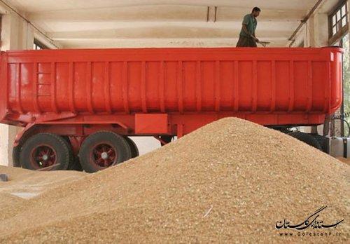 آمادگی 8500 کامیون برای جابجایی محصولات پاییزه گلستان