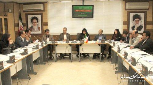 نشست هم اندیشی برپایی جشنواره فرهنگی و هنری روستا و عشایر  در استان گلستان تشکیل شد