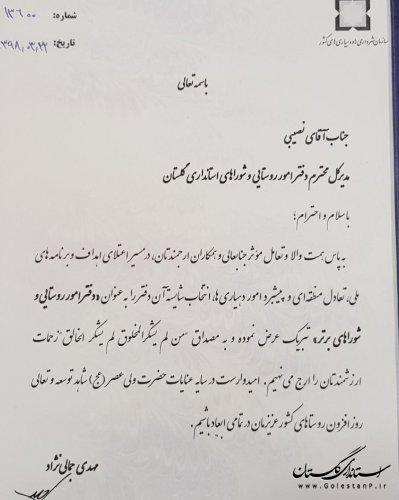 علی نصیبی مدیرکل برتر امور روستایی و شوراها استانداری های کشور شد