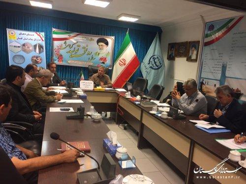برگزاری جلسه کمیته برنامه ریزی و نظارت بر رهاسازی بچه ماهیان استخوانی و خاویاری در شیلات گلستان