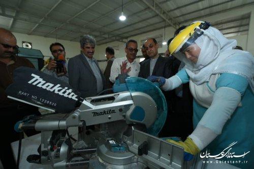 اجرای پروژه کشتگاه خورشیدی موجب ایجاد اشتغال پایدار و توسعه صادرات غیرنفتی شده است