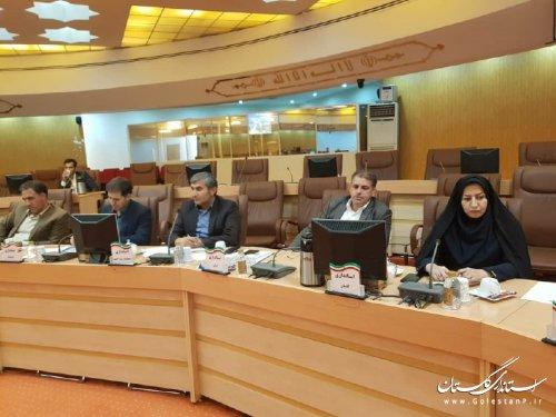 حضور مدیرکل شهری و شوراهای استانداری گلستان در نشست مدیران کل دفاترشهری سراسر کشور