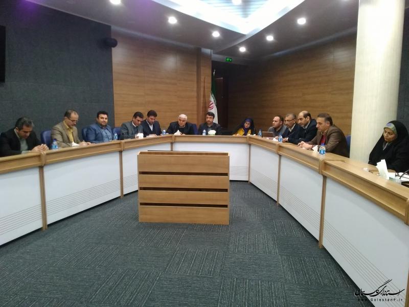 ایجاد شهر جهانی فرش ترکمن در گنبدکاووس مشکلات فروش فرش ترکمن در استان را برطرف می کند