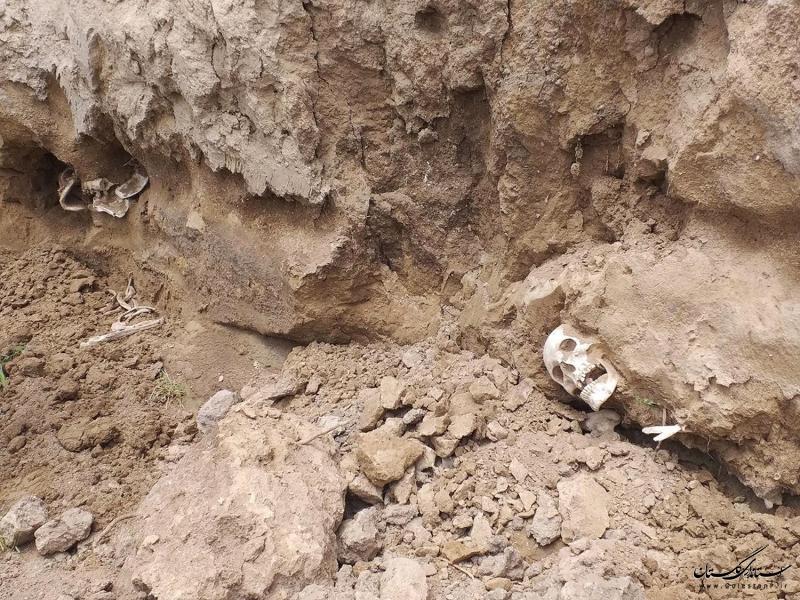 توضیحاتی در خصوص پدیدار شدن اسکلتهای انسانی در روستای قرهتپه شهرستان بندر ترکمن