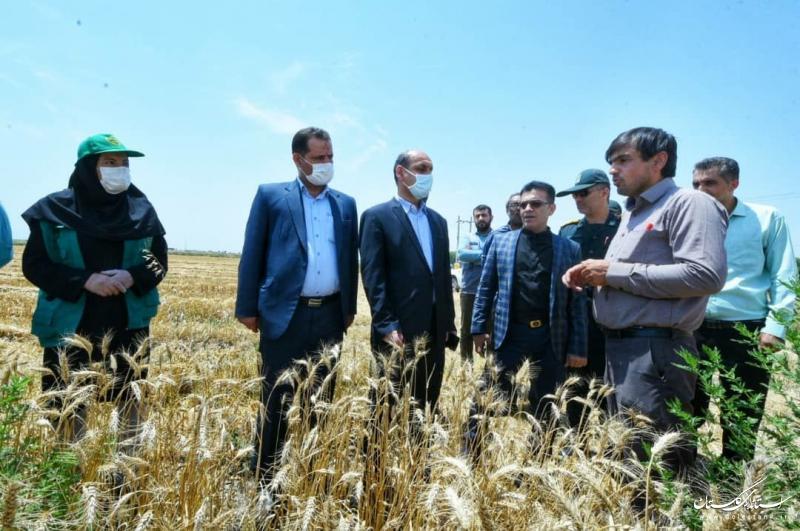 امسال شاهد جهش در تولید محصولات کشاورزی هستیم