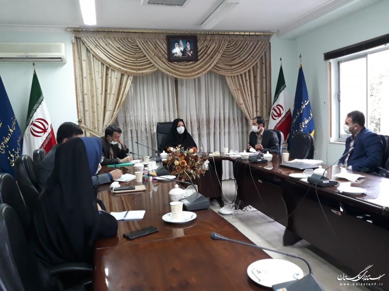 کمیته نظارت بر طرح توانمند سازی اقتصادی زنان سرپرست خانوار استان گلستان برگزارشد