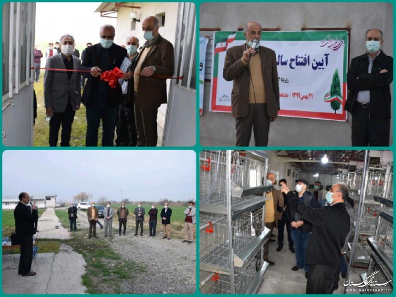 افتتاح سالن پرورش مرغ تخمگذار در مزرعه آموزشی تحقیقاتی دانشگاه علوم کشاورزی و منابع طبیعی گرگان