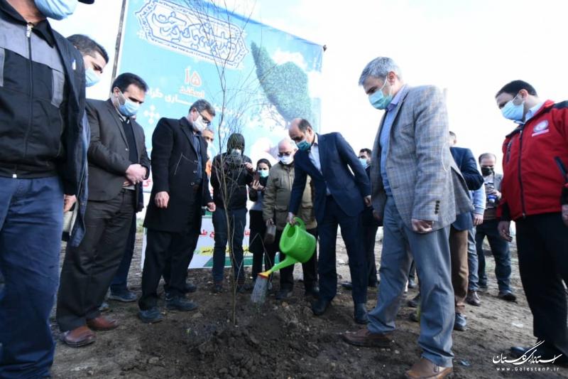 درختکاری بهبود محیط زندگی و آب و هوای مردم گلستان را به همراه دارد
