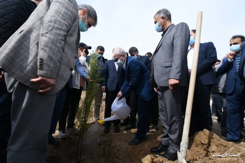 بیابان زدایی و توسعه فضای سبز یکی از مهمترین اولویت های استان است