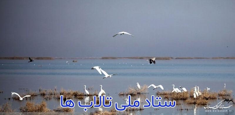 طرح طبیعت گردی جزیره آشوراده در ستاد ملی تالابها تصویب شد