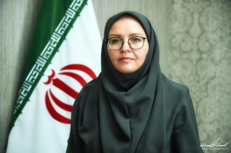 مدیرکل دفتر امور زنان و خانواده استانداری