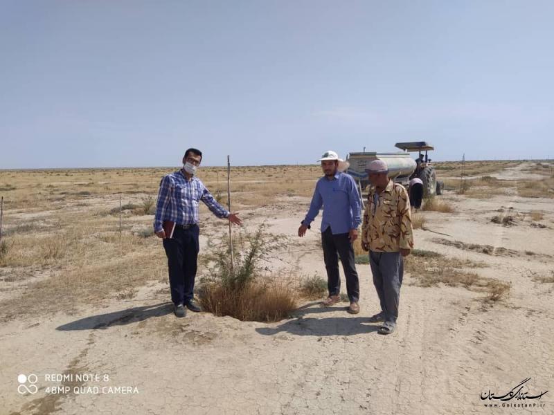 اجرای طرح کمربند سبز در ۵ هزار هکتار از منطقه مرزی استان