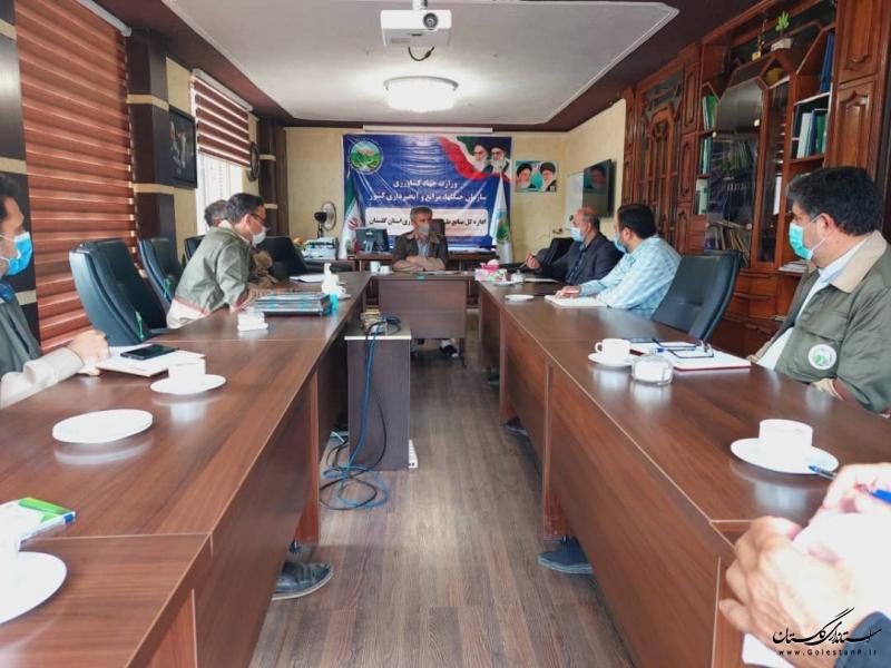 امضا توافق نامه همکاری سه جانبه مشترک بین سازمان جنگلها، بسیج مستضعفین و سپاه سه استان شمالی کشور