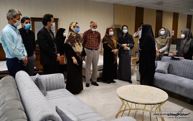مدیر کل امور بانوان و خانواده استانداری گلستان از صنعت مبلمان روستای عطاآباد بازدید کرد